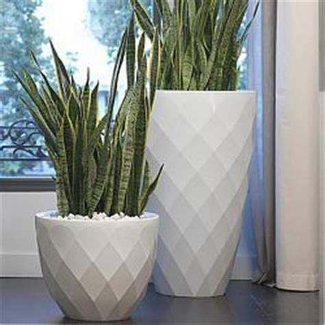 Garden Vases Planters by Best 25 Large Outdoor Planters Ideas On