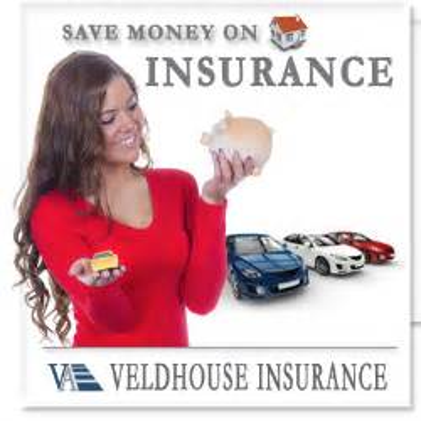 Free Insurance Quote   Veldhouse Insurance Agency
