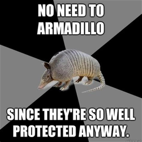 Armadillo Meme - english major armadillo