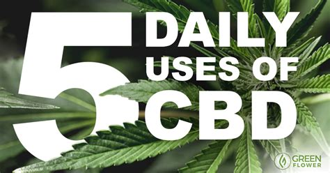 Can I Still Take Cbd While Detoxing by 5 Ways To Use Cbd Every Day That Might You