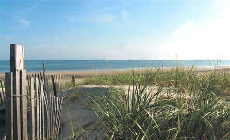 friendly beaches cape cod best beaches in massachusetts 100 awesome beaches in boston and beyond boston