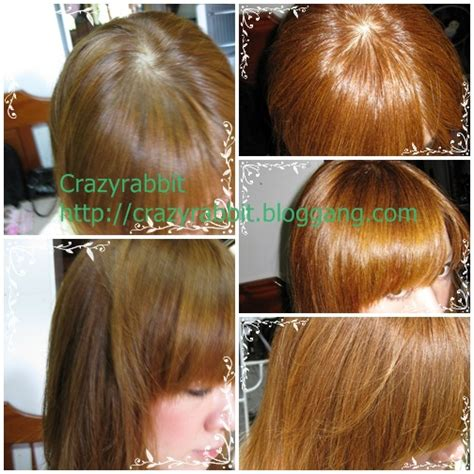 Beauteen Hair Color By Nooidds review ส ผมส ท 8 ก บ honey brown beauteen