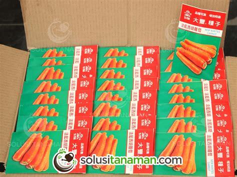Bibit Sayur Wortel wortel new nantes carrot 20gr bibit tanaman sayur