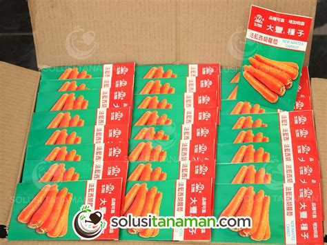 Bibit Tanaman Wortel wortel new nantes carrot 20gr bibit tanaman sayur