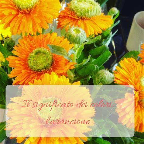 il significato dei colori dei fiori il significato dei colori l arancione