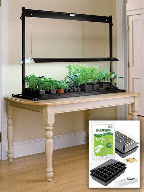 fluorescent grow lights  tabletop garden starter kit