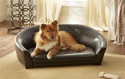 stop dog going on sofa luxury pet loungers couch pet bed