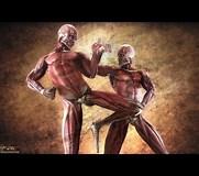 Image result for Top Ten Deadliest Fighting Styles