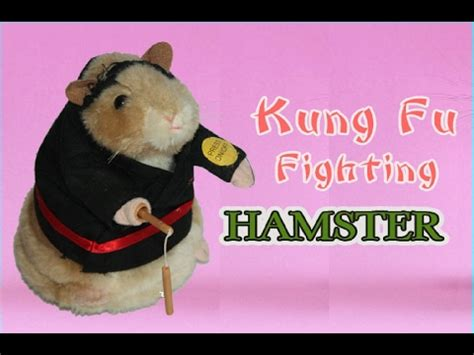 youtube music hamster dance dancing and singing hamster kung fu fighting hamster toy