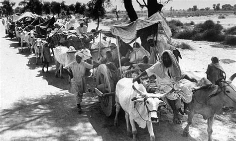 the struggle for pakistan a muslim homeland and global politics books 1947 a caravan its way to a new homeland photo