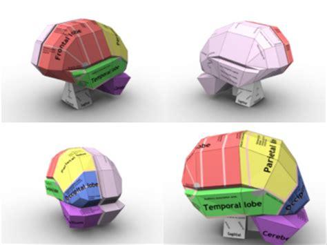 How To Make A Paper Brain - brain origami cathy pfeil