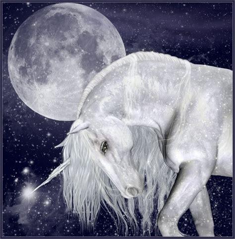 cavalli volanti immagini di unicorni