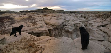 On the Road, Again: Bisti Badlands!   Travels with the