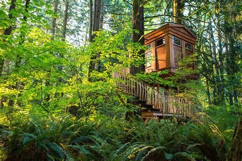 treehouse point treehouse point