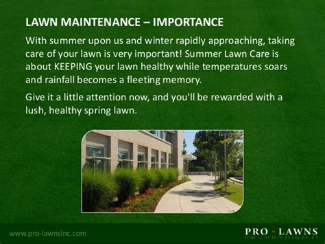 summer lawn care tips commercial lawn maintenance summer tips