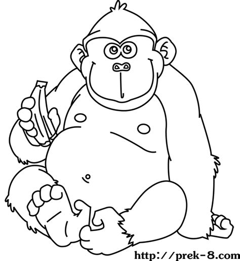 Animal Safari Coloring Pages by Safari Animal Coloring Pages Coloring Home