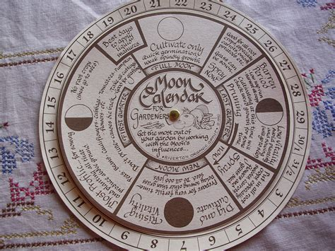 Gardening By The Moon by Threadbear Gardening By The Moon Suitcase Planting