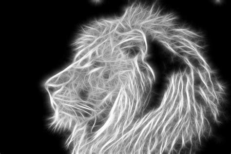 imagenes de leones a blanco y negro image gallery leon blanco y negro