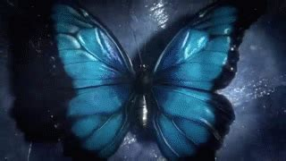 butterfly tattoo until dawn until dawn gif find share on giphy