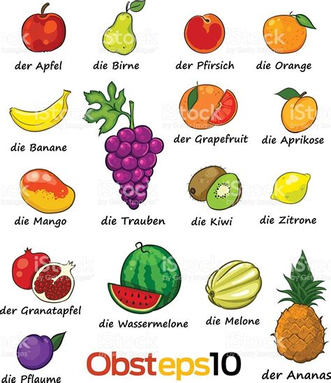 d fruit names set of vector fruits with deutch names stock vector