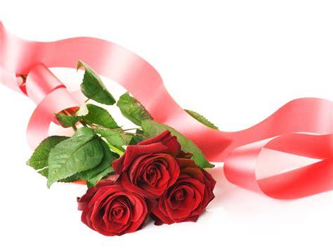imagenes de rosas rojas para una madre banco de im 225 genes para ver disfrutar y compartir