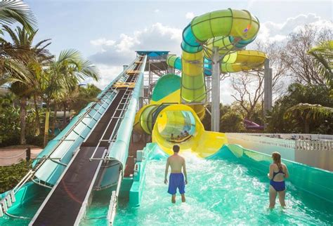 theme park miami theme parks get ready for a wild ride miami herald