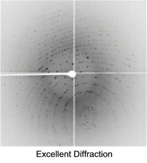 protein x diffraction pattern research protein crystallography c r y s t a l q u a l i t y