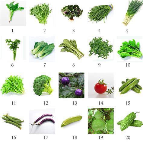 heirloom garden vegetable seed non gmo seeds bank survival