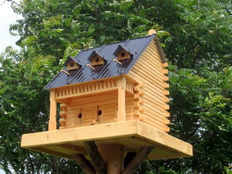 decorative bird house plans bird houses the backyard naturalist the backyard