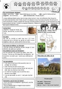 Calendrier Cm 2018 Zone Afrique Lecture Doc 233 L 233 Phant D Afrique La Fouine En Clis
