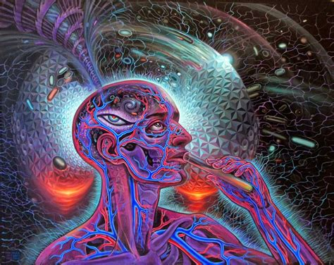 augureye express dmt and the persistent illusion