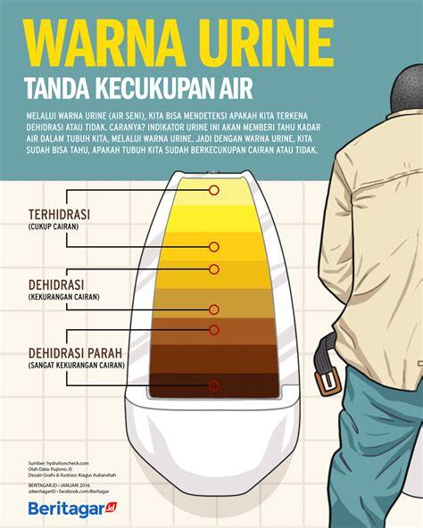 Warna Air Kencing Wanita Hamil Muda Warna Urine Menandakan Kecukupan Air Dalam Tubuh