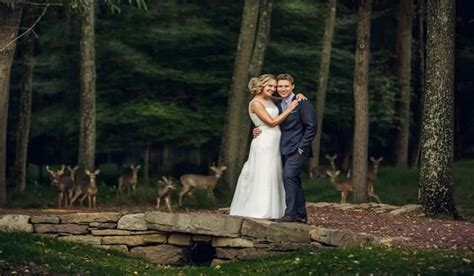Wedding Photo Session by Deer Herd Crashes Wedding Photo Session Outdoorhub