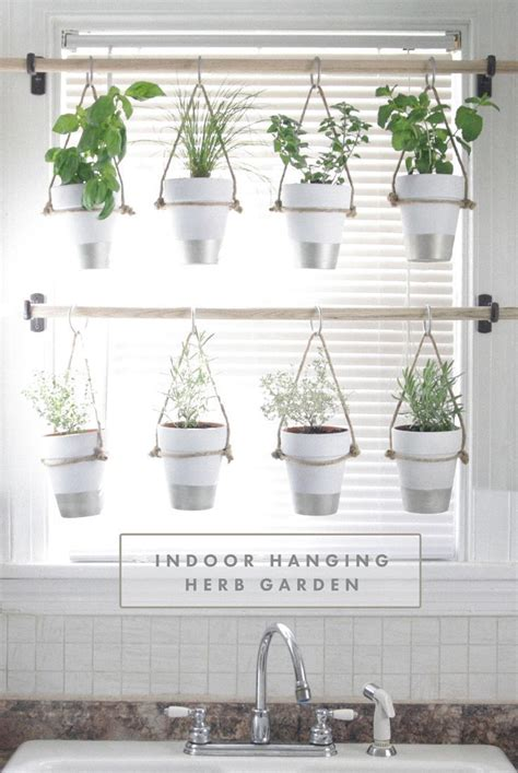 herb garden indoor 25 best ideas about hanging herbs on pinterest hanging