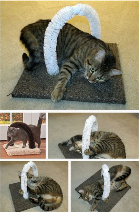 diy cat 20 purrfect diy projects for cat owners diy crafts