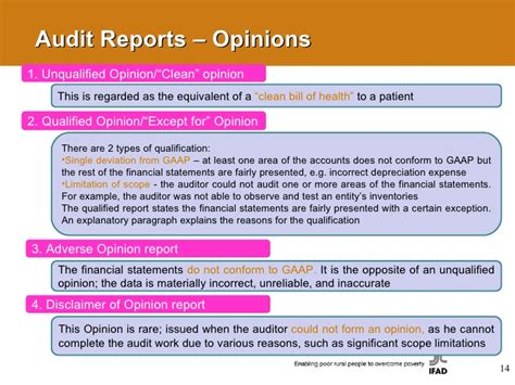 sle of qualified opinion audit report external audit