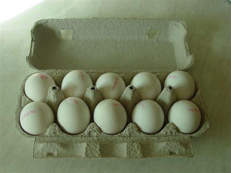 usaha membuat telur asin 2 cara membuat telur asin aneka rasa serta tips berbisnis