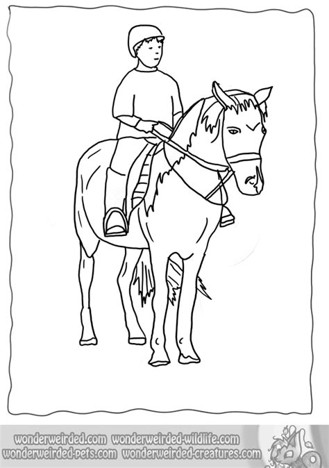 horse riding coloring pages   print