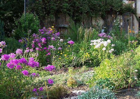 garten englischer stil englischer garten cottagegarten mit stauden und phlox