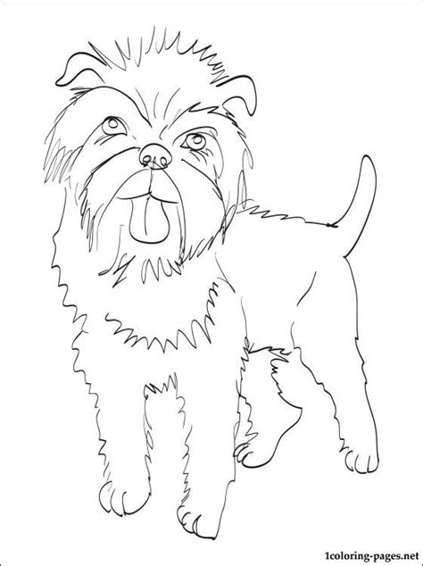 coloring book pages dog breeds affenpinscher coloring page coloring pages