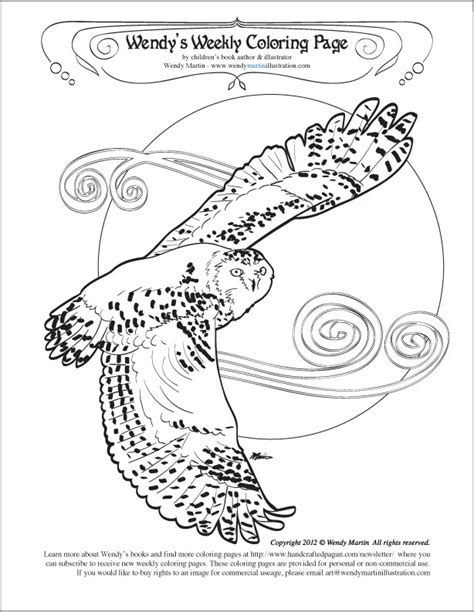 coloring page snowy owl gallery for gt snowy owl coloring page