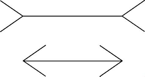 ilusiones opticas lineas paralelas bienvenidos a descubrirlaquimica ii ilusiones 243 pticas
