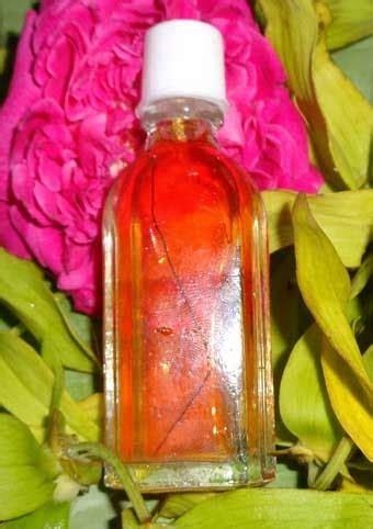Minyak Bulu Perindu Asli minyak bulu perindu asli dayak peletgendamasmoro