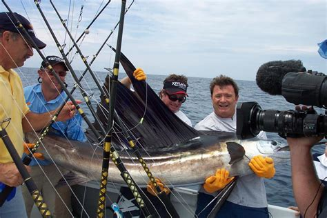 fishing boat hire mooloolaba charters adventure fishing charters