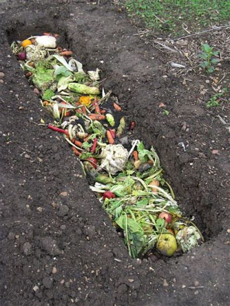 52 Best Garden Composting Images On Pinterest Garden Best Organic Compost For Vegetable Garden