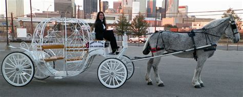 lights carriage rides dallas carriage rides dallas decore