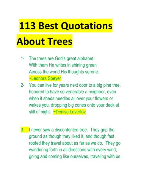 Importance Of Trees Essay by The Importance Of Trees Essay Buy Essay
