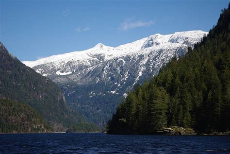 sunshine coast boat tours princess louisa inlet boat tour sunshine coast bc