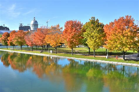 Mailing Address Lookup Canada Autumn Colors In Vieux Port Montreal Canada 171 Capture Travel Photography