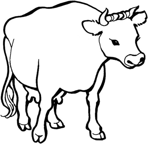 cow colors cow 1 coloring page free printable coloring pages